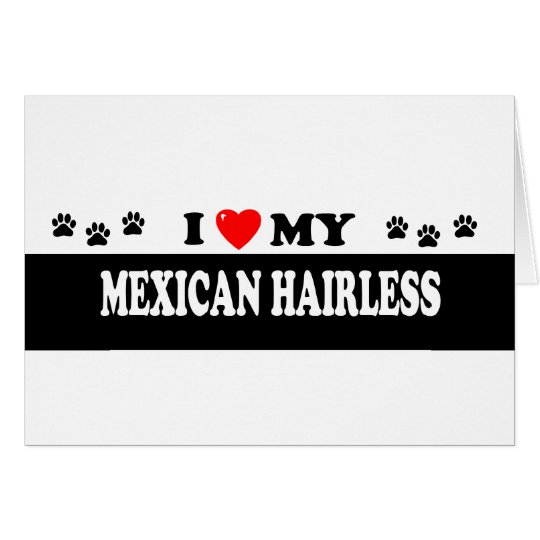 MEXICAN HAIRLESS CARD