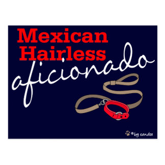 Mexican Hairless Post Card