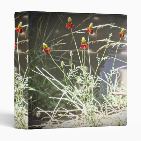 Mexican Hat Coneflower Flower in the Mountains Binder