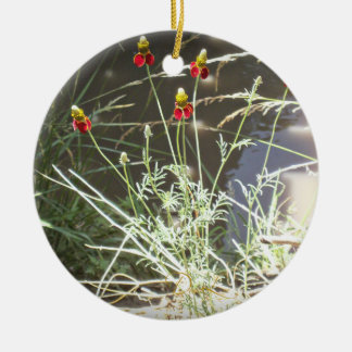 Mexican Hat Coneflower Flower in the Mountains Ceramic Ornament