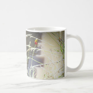Mexican Hat Coneflower Flower in the Mountains Classic White Coffee Mug