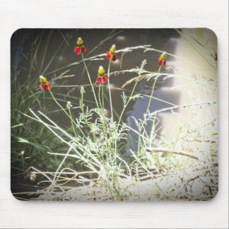 Mexican Hat Coneflower Flower in the Mountains Mouse Pad