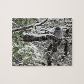 Mexican Jay on a Snowy Branch Jigsaw Puzzle