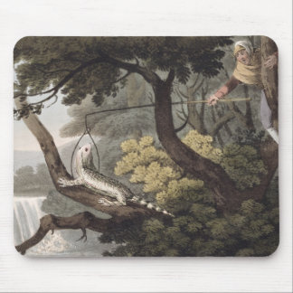 Mexican Lizard Catcher, engraved by Matthew Dubour Mouse Pad