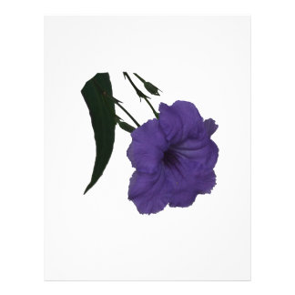 Mexican Petunia cutout flower Flyer