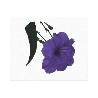 Mexican Petunia cutout flower Gallery Wrap Canvas