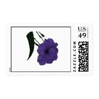 Mexican Petunia cutout flower Postage Stamps