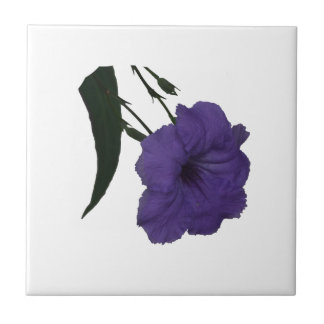 Mexican Petunia cutout flower Small Square Tile