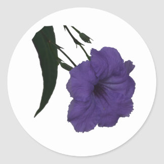 Mexican Petunia cutout flower Stickers