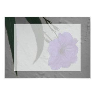 Mexican Petunia  flower Card