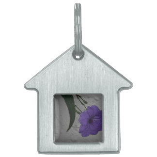 Mexican Petunia  flower Pet Name Tag