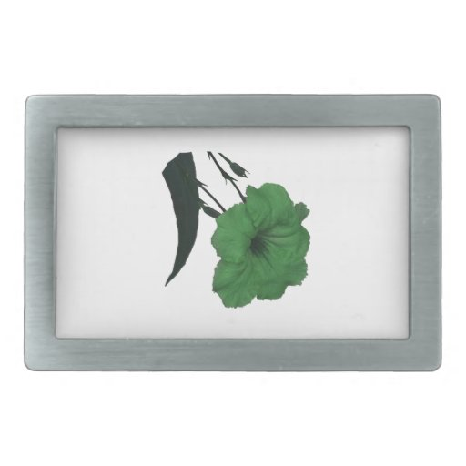 Mexican Petunia green colorized flower Rectangular Belt Buckle