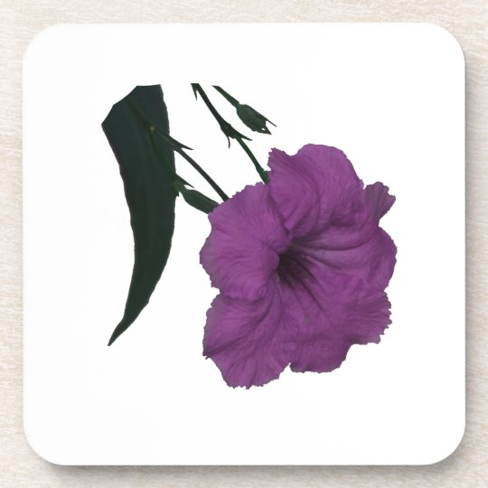 Mexican Petunia pink colorized flower Beverage Coaster