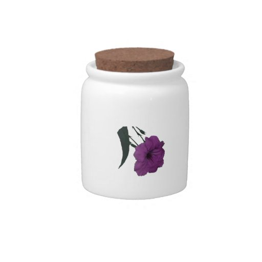 Mexican Petunia pink colorized flower Candy Jars