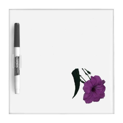 Mexican Petunia pink colorized flower Dry Erase Boards