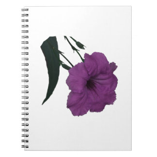 Mexican Petunia pink colorized flower Notebooks
