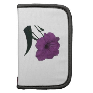 Mexican Petunia pink colorized flower Organizer