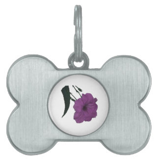 Mexican Petunia pink colorized flower Pet Tag