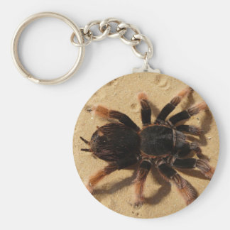 Mexican Pink Tarantula Basic Round Button Keychain