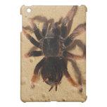 Mexican Pink Tarantula iPad Mini Cases