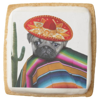 Mexican pug dog square shortbread cookie