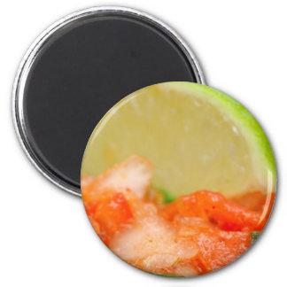 Mexican Salsa Magnet