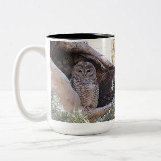 Mexican Spotted Owl Mug, left-handled Two-Tone Coffee Mug