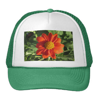 Mexican Sunflower Hat