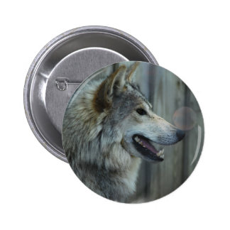 Mexican Wolf Button