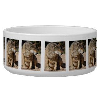 Mexican Wolf Portrait Bowl