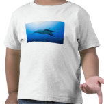 México, Baja California, reserva de la biosfera, Camiseta