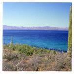 México, Baja California Sur, Mulege, Bahía 2 Azulejo Cuadrado Grande