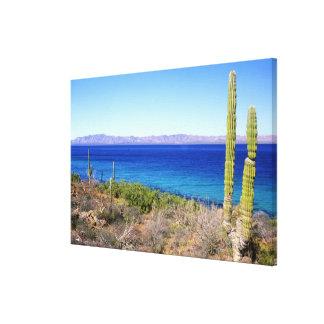 Mexico, Baja California Sur, Mulege, Bahia 2 Canvas Print