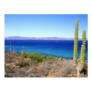 Mexico, Baja California Sur, Mulege, Bahia 2 Postcard