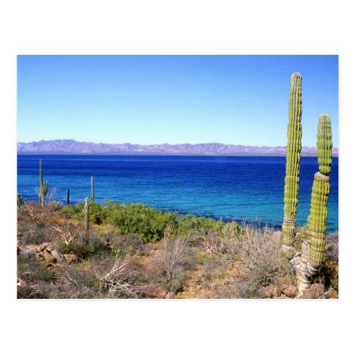 México, Baja California Sur, Mulege, Bahía 2 Tarjeta Postal
