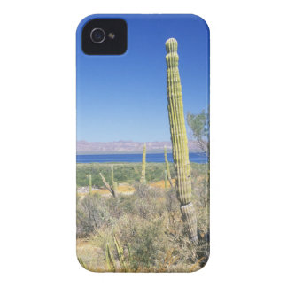 Mexico, Baja California Sur, Mulege, Bahia iPhone 4 Cover