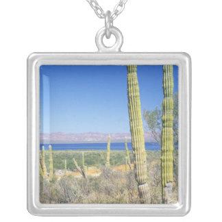 México, Baja California Sur, Mulege, Bahía Colgante Cuadrado