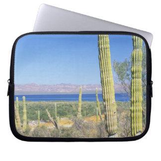 Mexico, Baja California Sur, Mulege, Bahia Laptop Computer Sleeves