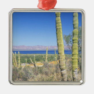 Mexico, Baja California Sur, Mulege, Bahia Metal Ornament