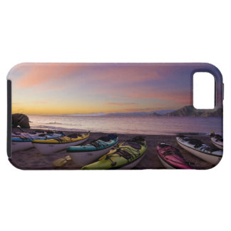 Mexico, Baja, Sea of Cortez. Sea kayaks and iPhone 5 Cover