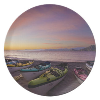 Mexico, Baja, Sea of Cortez. Sea kayaks and Dinner Plate