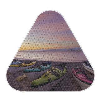Mexico, Baja, Sea of Cortez. Sea kayaks and Bluetooth Speaker