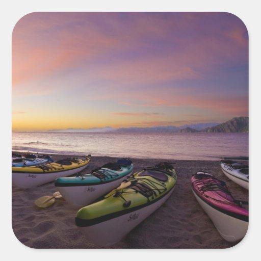 Mexico, Baja, Sea of Cortez. Sea kayaks and Square Stickers