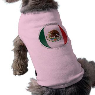 Mexico Bubble Flag Tee