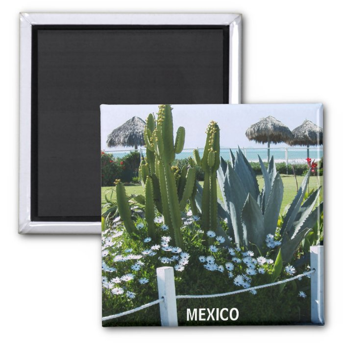 MEXICO CACTI 2 INCH SQUARE MAGNET