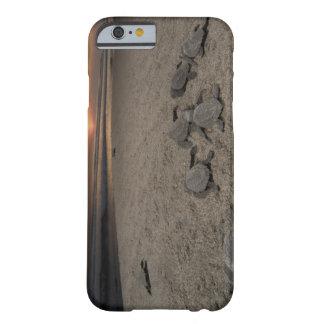 México, Chiapas, investigación de Boca del Cielo Funda De iPhone 6 Barely There