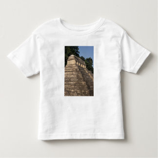 Mexico, Chiapas province, Palenque. Temple of 2 Toddler T-shirt
