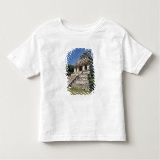 Mexico, Chiapas province, Palenque. Temple of T Shirt