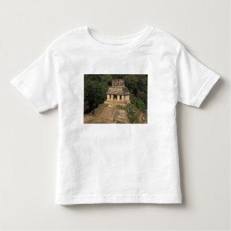 Mexico, Chiapas province,  Palenque, Temple of T Shirt