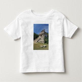 Mexico, Chiapas province, Palenque. Temple of T-shirt